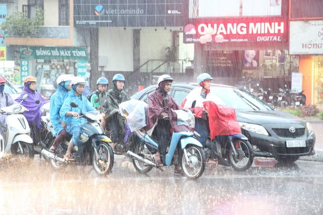 Hà Nội mưa giông lớn, cây đổ, đường ngập - 2