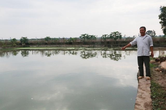 3 xào ao nuôi cá truyền thống thu nhập không đáng là bao được ông Nhượng chuyển sang nuôi cá lóc bông cho thu nhập cao mỗi năm.