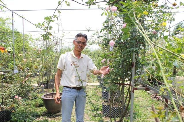Ông Hùng cho biết, bản thân là người đam mê và dành tình yêu đặc biệt cho cây cảnh và hoa hồng. Vào khoảng những năm 1996, 1997, ông đã bỏ công sức sưu tập và tìm hiểu về các loại hoa hồng của Việt Nam và trên thế giới.