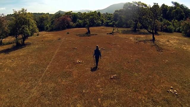 Chị Pamela Gale Malhotra và chồng - anh Anil Malhotra đã quyết định sẽ tự tay gây dựng một cánh rừng trên khu đất trống mà họ mua được.