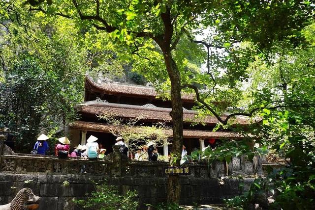 Nằm bên sườn núi, có chùa, có núi, có động, chùa Bích Động là ngôi chùa cổ linh thiêng bậc nhất ở Ninh Bình, luôn thu hút nhiều du khách đến tham quan và đi lễ chùa.