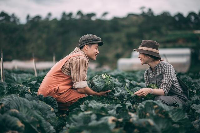 Vì đều yêu thích sự giản dị nên Tươi và Vũ đã quyết định thực hiện thêm bộ ảnh cưới tại vườn bắp cải đang độ thu hoạch.