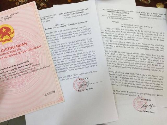 Các giấy tờ cho thấy ông Trịnh Xuân Giới là Chủ tịch Hội đồng quản trị Công ty TNHH Mai Phương, sở hữu khu đất có biệt thự Mai Chi