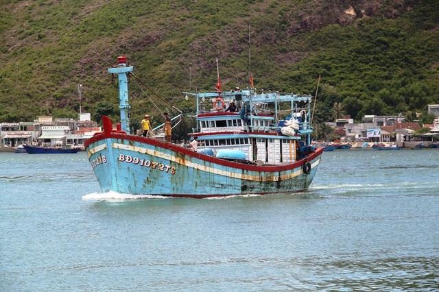 Cơ quan chức năng tỉnh Bình Định đang xem xét đề xuất đổ 439.000 m3 bùn nạo vét luồng cảng Quy Nhơn ra biển Quy Nhơn