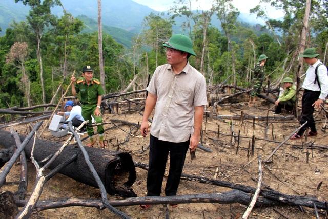Lãnh đạo tỉnh Quảng Nam thị sát khu vực rừng phòng hộ ở xã Tiên Lãnh bị phá