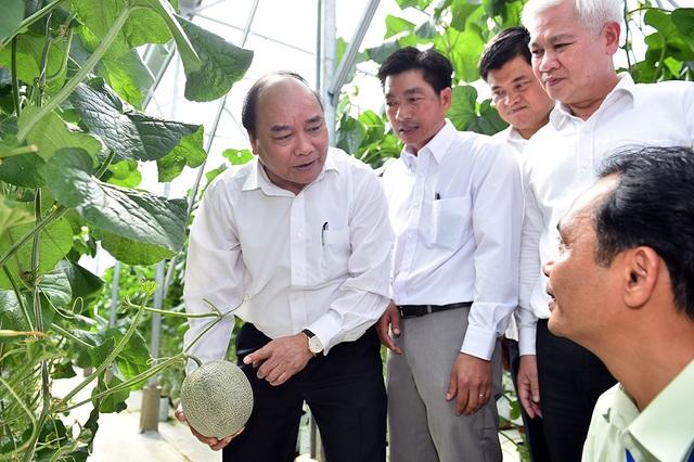 Thủ tướng thăm vườn dưa lưới công nghệ cao tại Bình Phước