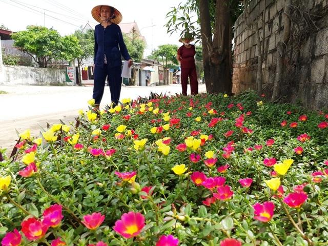 Những con đường rực rỡ sắc hoa nơi miền quê thanh bình - 6