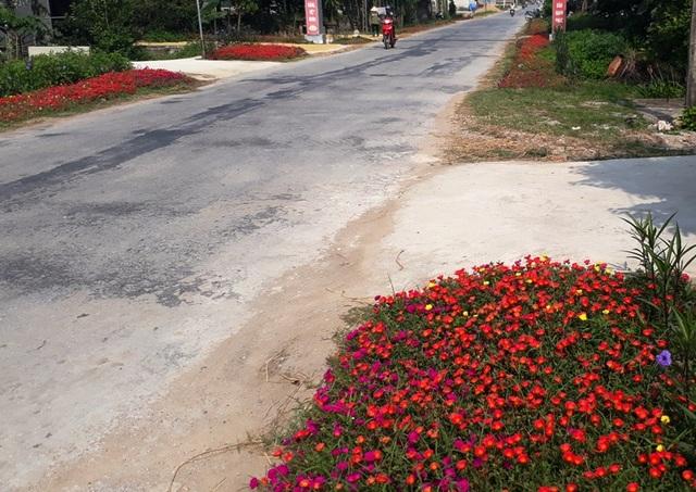 Không chỉ các đường làng, ngõ xóm mà những con đường liên xã cũng được trồng hoa dọc hai bên đường