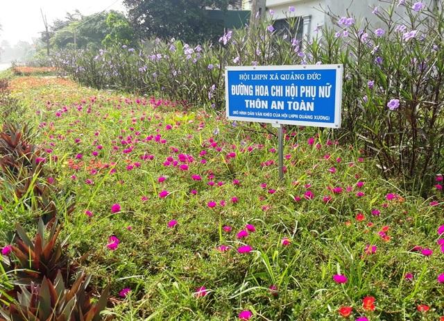 Những bãi đất ven đường lâu nay là nơi cỏ dại mọc, nay được thay thế bởi những luống hoa sặc sỡ