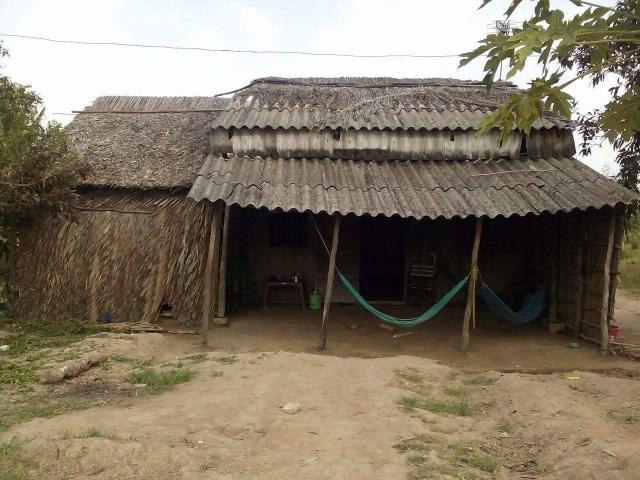 Căn nhà lá giữa cánh đồng mà vợ chồng chị Xuyến mượn của người quen để che mưa che nắng cho cả nhà, nhưng mùa nước nổi thì nước ngập xâm xấp mắt cá chân