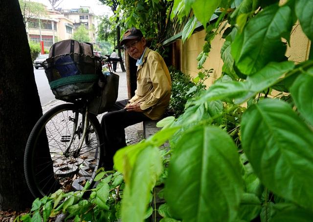 Ông Nguyễn Văn Trụ (65 tuổi) cho biết: Buổi trưa chú phải ngồi nép mình vào hàng cây xanh để ngồi cho đỡ nắng nóng.