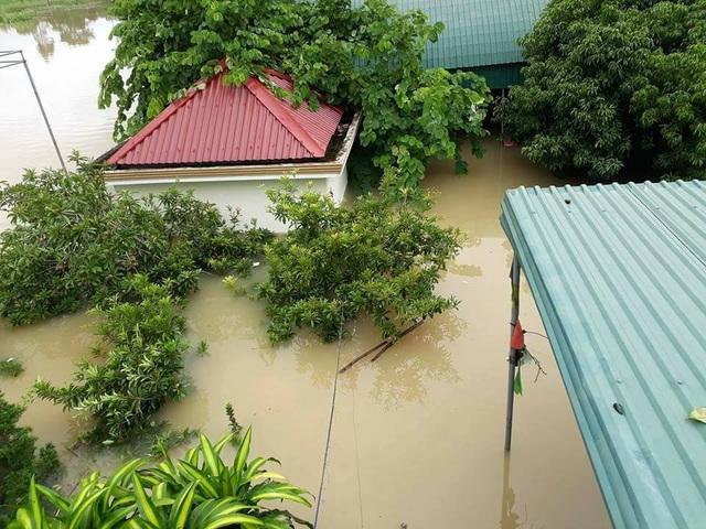 Trường học nhìn từ trên tầng 2.