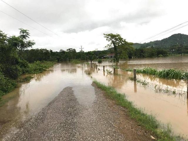 Nhiều tuyến đường, nhà dân tại huyện Nghĩa Đàn ngập trong biển nước.