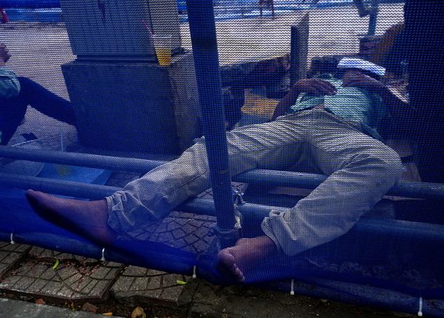Công nhân xây dựng nép mình vào gốc cây để ngủ trưa.