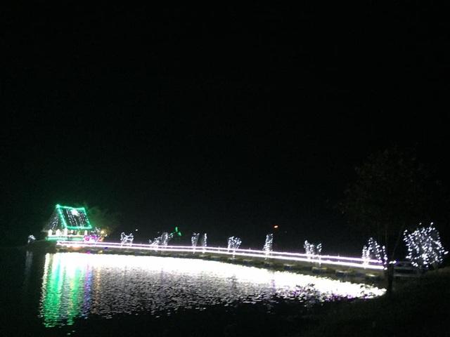 Cây thông Noel ghép bằng 6.000 nồi đất được xác lập Kỷ lục Việt Nam - 8