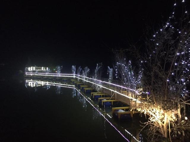 Cây thông Noel ghép bằng 6.000 nồi đất được xác lập Kỷ lục Việt Nam - 7