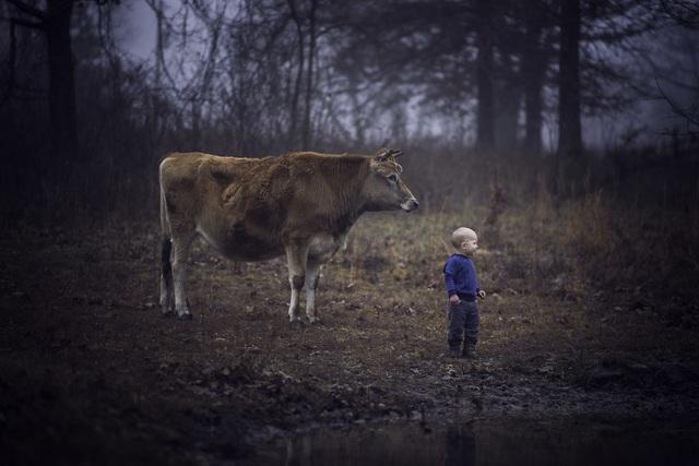 Bộ ảnh tuyệt đẹp về tuổi thơ trên nông trại - 15