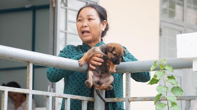 Chú chó con cũng theo chủ đến nhà trú bão