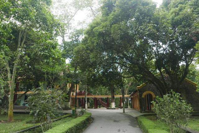 Nhà làm việc của Chủ tịch Hồ Chí Minh được nối với nhà nhà bếp bằng lối đi có mái che. Cả khu nhà ẩn mình dưới những tán cây cổ thụ của khu rừng K9. Năm 1961, tại ngôi nhà này, Hồ chủ tịch đã tiếp bà Đặng Dĩnh Siêu (Phu nhân Thủ tướng Trung Quốc Chu Ân Lai). Năm 1962, Bác tiếp Anh hùng vũ trụ Liên Xô G.Titop.