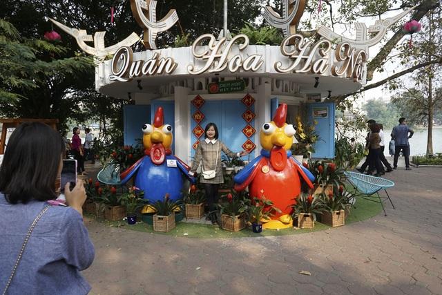 Người dân chụp ảnh lưu niệm bên các chú gà có nhiều ở khu v hồ Gươm.