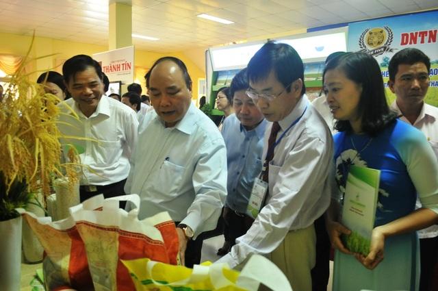 Thủ tướng Nguyễn Xuân Phúc thăm các gian hàng trưng bày gạo của các DN xuất khẩu gạo hàng đầu Việt Nam