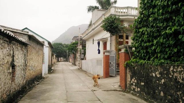 Hàng chục hộ dân thôn Sẽ Chè chỉ biết kêu trời vì mỗi ngày phải chịu một trận động đất.