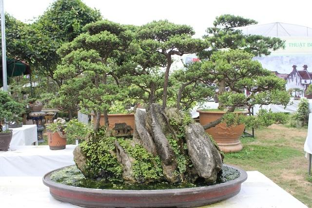 """Cây Tùng cối của tác giả Trần Đức Toàn. Tác phẩm được thiết kế với một tiểu cảnh gợi giống như một bức tranh """"sơn thủy hữu tình"""" với mái nhà cổ kính, rêu phong và rừng cây tỏa bóng dưới dòng nước. Cây có giá vào khoảng 300 triệu đồng."""