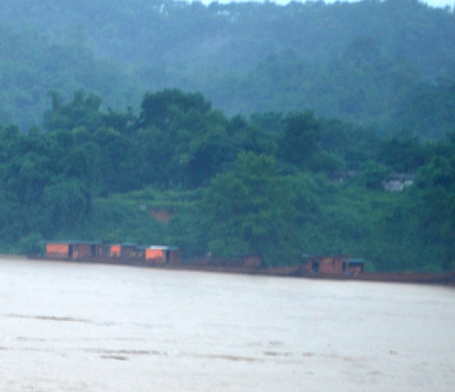 7 chiếc thuyền bị nước lũ cuốn trôi trên sông Hồng được người dân khu vực Tân Lập, phường Bắc Cường cứu hộ đưa vào bờ tập kết an toàn.