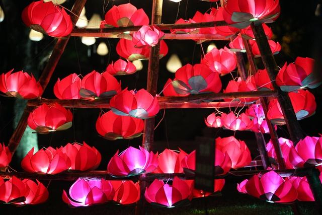Đèn lồng hoa sen thu hút ánh nhìn của du khách.