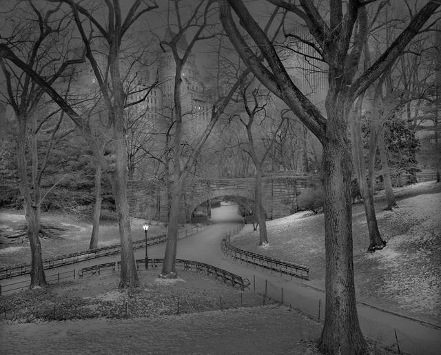 Lối vào công viên (2012)