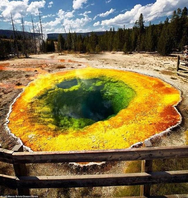 Các đồng xu được ném xuống hồ đã chặn các lỗ thông hơi, nhiệt độ bên trong giảm xuống. Điều này khiến cho thảm vi khuẩn phát triển tạo nên màu sắc độc đáo.