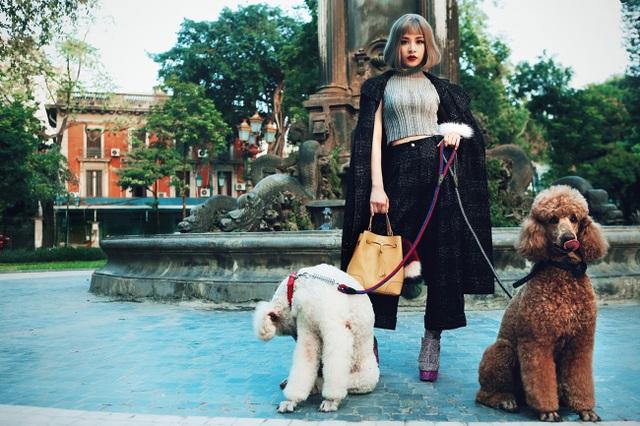Chi Pu sang chảnh dắt cún cưng nghìn đô dạo phố ngày xuân - 4