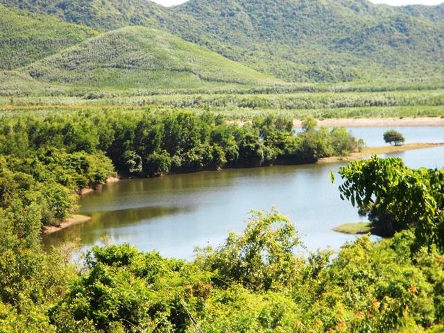 Nhiều khu vực rừng phòng hộ đầu nguồn hồ Cây Thích bị lấn chiếm trồng rừng keo lai