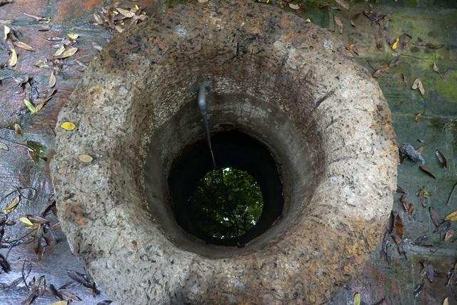 Phần cổ giếng được làm từ đá ong nguyên khối rất đẹp và khác lạ so với các loại giếng khơi vùng quê Bắc Bộ. Giếng này khi xưa cung cấp nước cho 2 xóm đình Đông và đình Tây, đến khoảng năm 1964 thì ít được sử dụng do các hộ dân đã dần tự đào giếng riêng.  Do nguồn nước trong sạch dồi dào, mực nước của giếng gần như không bao giờ thay đổi dù có dùng nhiều. Hiện tại một phần lòng giếng đã được gia cố lại bằng xi-măng ở phía trên mực nước.