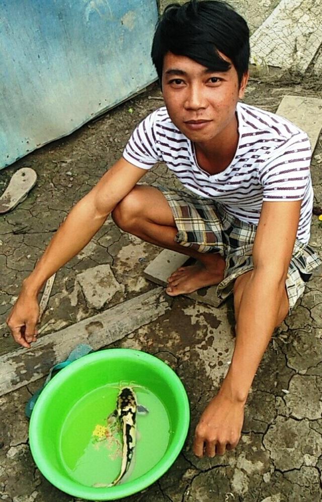 Có nhiều người trả giá cao để mua con cá trê lạ nhưng anh Hòa không bán.