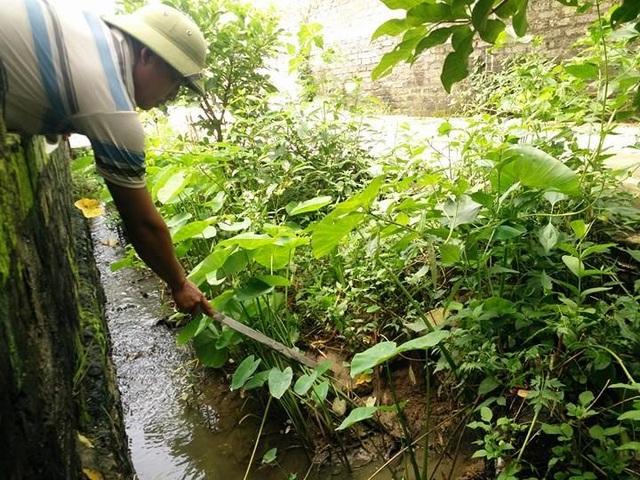 Anh Lung chỉ cho PV Dân trí nơi nước thải của hộ ông Mãn chảy ra thường xuyên có các hạt nhựa.