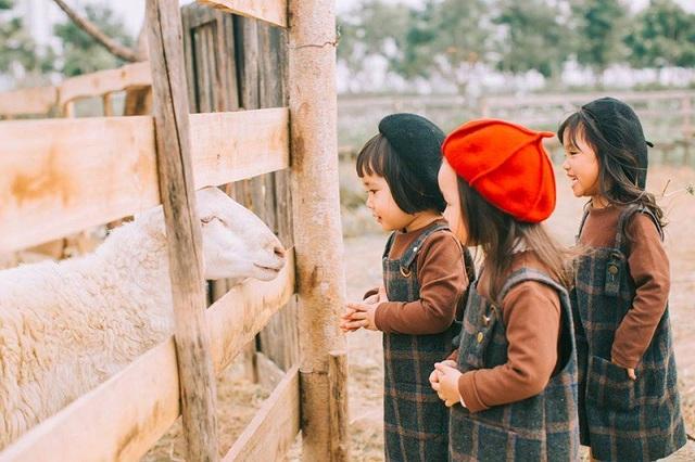 """Và cuối cùng, bạn có mái tóc Maruko huyền thoại là Trần Khánh Ly, tên """"cúng cơm"""" của Khánh Ly ở nhà là Nana. Tết năm nay Nana sẽ lên 3 tuổi."""