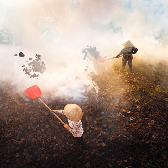 Ảnh đẹp trong ngày 17/8/2016. Hai người nông dân đang đốt đài sen khô sau khi thu hoạch. Khói ảnh hưởng đến sức khoẻ của họ mặc dù mỗi người nhận được chỉ 150.000 đồng cho mỗi ngày làm việc. Ảnh chụp tại Hà Nam.