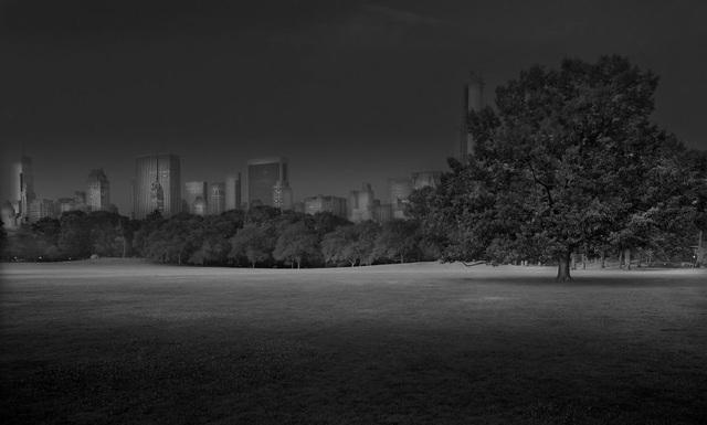 Bình minh trên thảm cỏ (2012)