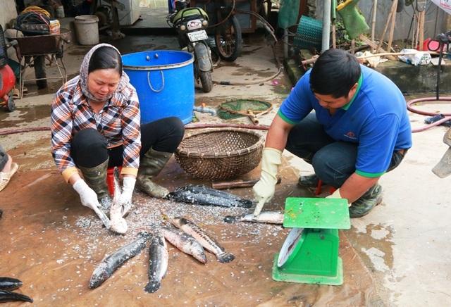 Vợ và con ông Nhượng làm thịt cá để nhập cho nhà hàng theo hợp đồng.