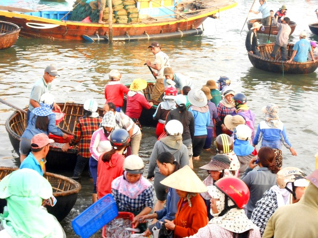 Mực vừa cập bờ đã có rất đông người lao ra tranh mua cho được mẻ mực tươi ngon