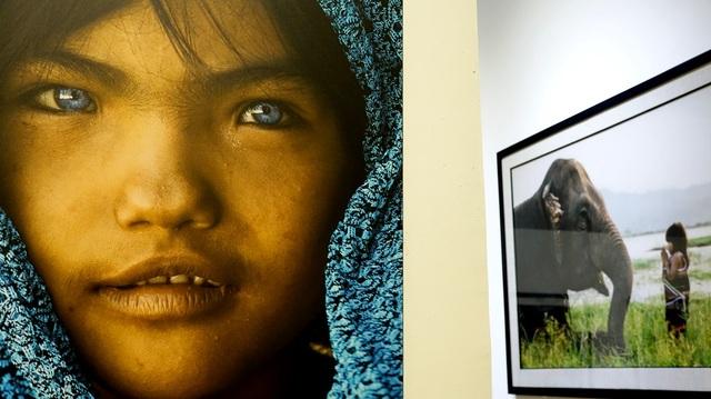 Phía sau bên phải chính là bức ảnh em bé M'nông huấn luyện voi, với Réhahn, anh thích sự ngây thơ, trong sáng của trẻ con