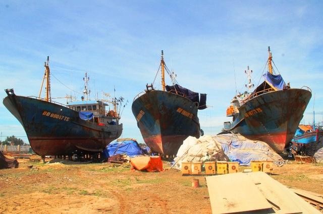 Hiện nay, có 7 tàu cá vỏ thép của Công ty TNHH MTV Nam Triệu đã lên đà tại Nhà máy đóng tàu Tam Quan (huyện Hoài Nhơn, Bình Định) đang tiến hành sửa chữa.