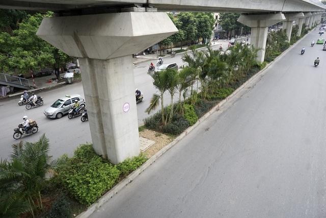 Hiện cau cảnh đã được trồng trên một đoạn khoảng 1km từ Ngã Tư Sở đến nút giao Nguyễn Trãi - Khuất Duy Tiến.