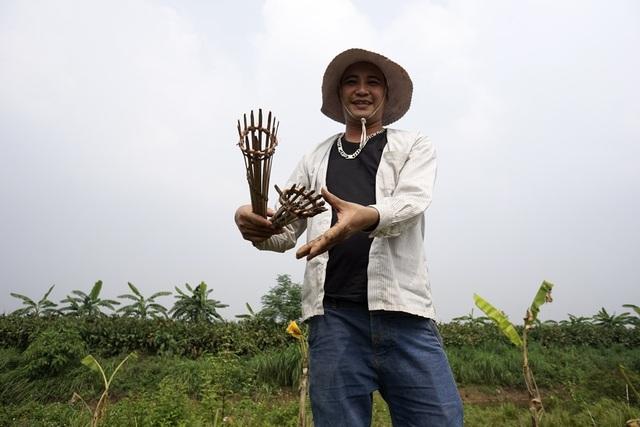 Công cụ rất đơn giản bao gồm những chiếc rọ làm bằng ống tre, xô, cuốc, thuổng.
