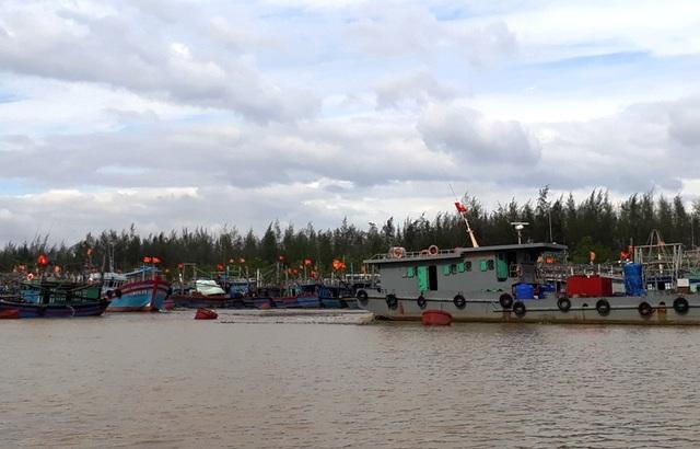 Tại âu thuyền Quảng Tiến đã có rất nhiều tàu thuyền vào neo đậu trú bão