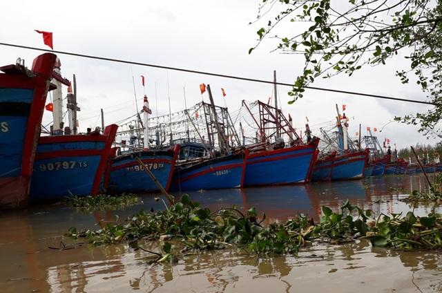 Cơ bản tàu thuyền đã được neo đậu vào nơi an toàn