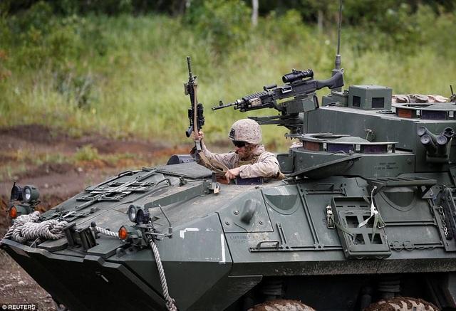 """Xe thiết giáp LAV-25 được thiết kế để hoạt động trên cạn và dưới nước, mục đích sử dụng chính là xe trinh sát. Nó nặng 13 tấn và được """"mặc"""" lớp áo giáp 10mm thép cứng. LAV-25 được trang bị súng ống 25mm trên tháp pháo chính và 2 súng máy nhỏ hơn trang bị bên thân xe. LAV-25 phục vụ trong quân đội Mỹ từ năm 1983."""