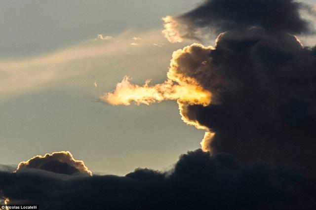 Quái vật trên bầu trời.