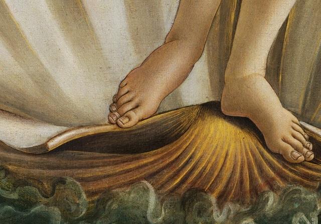 Bàn chân nàng Vệ Nữ trong bức họa của danh họa người Ý Sandro Botticelli.